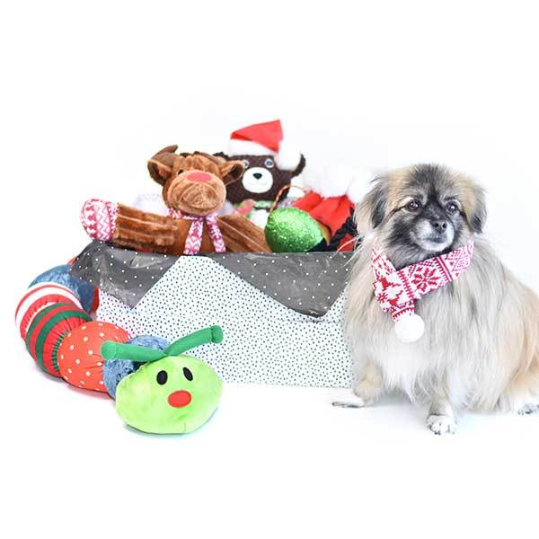 Holiday and Christmas Gifts for dogs Holiday toy giftbox Patchwork Pet with plush dog toys and goldendoodle