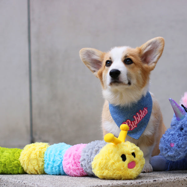 Patchwork Pet Plush Caterpillar Dog Toy with Corgi Dog