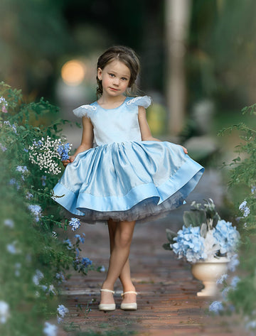 Blush Dreams Dress Blue