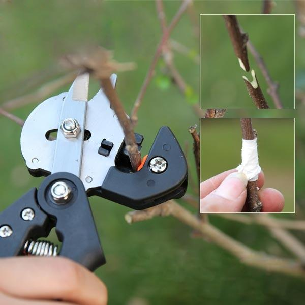 Garden Fruit Tree Pro Pruning Grafting Tools