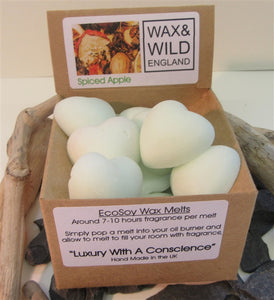 Box of 20 Soy Wax Melts - Spiced Apple