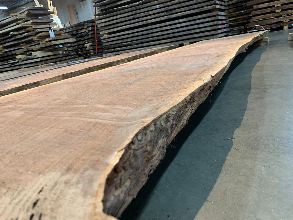 "Claro Walnut Slab #10557 (137"" x 29"" - 40"" x 2.5"")"