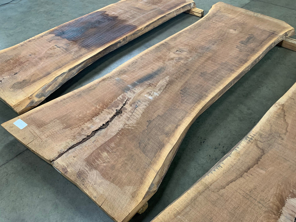 "Black Walnut Slab #10903 (100"" x 32"" - 43"" x 2.5"")"