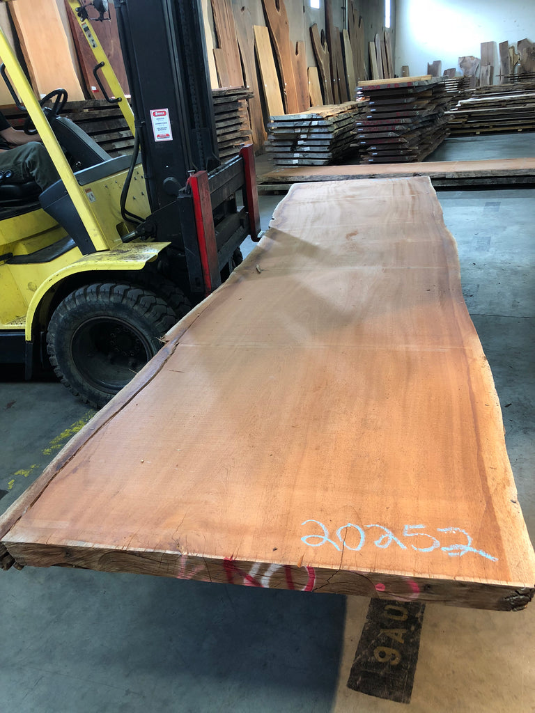 "African Mahogany (Sipo) Live Edge Slab (2.62"" x 47 - 49"" x 199"")"
