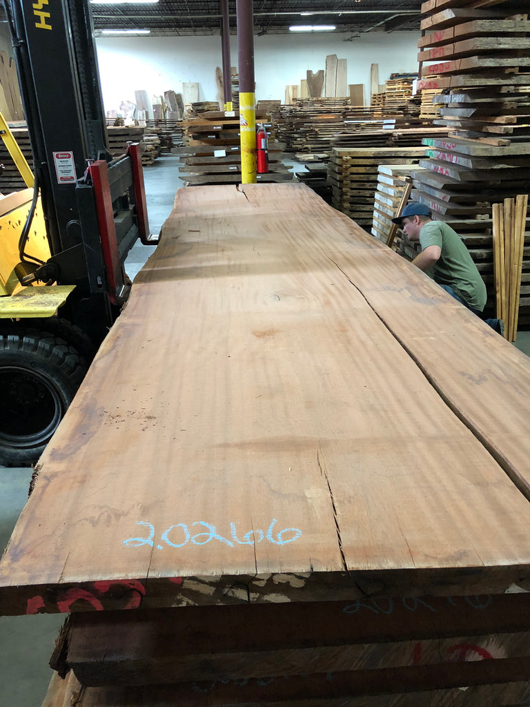 "African Mahogany (Sipo) Live Edge Slab (2.62"" x 51.5 - 56"" x 208.5"")"