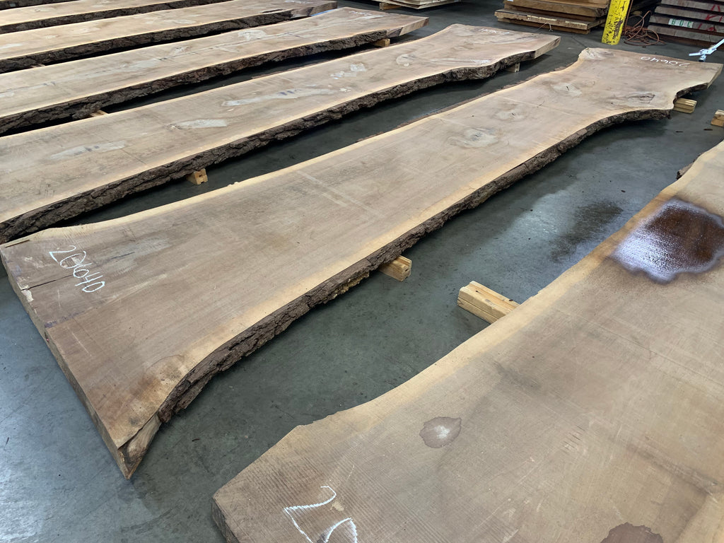 "Black Walnut Slab #20640 (192"" x 32"" - 46"" x 3"")"