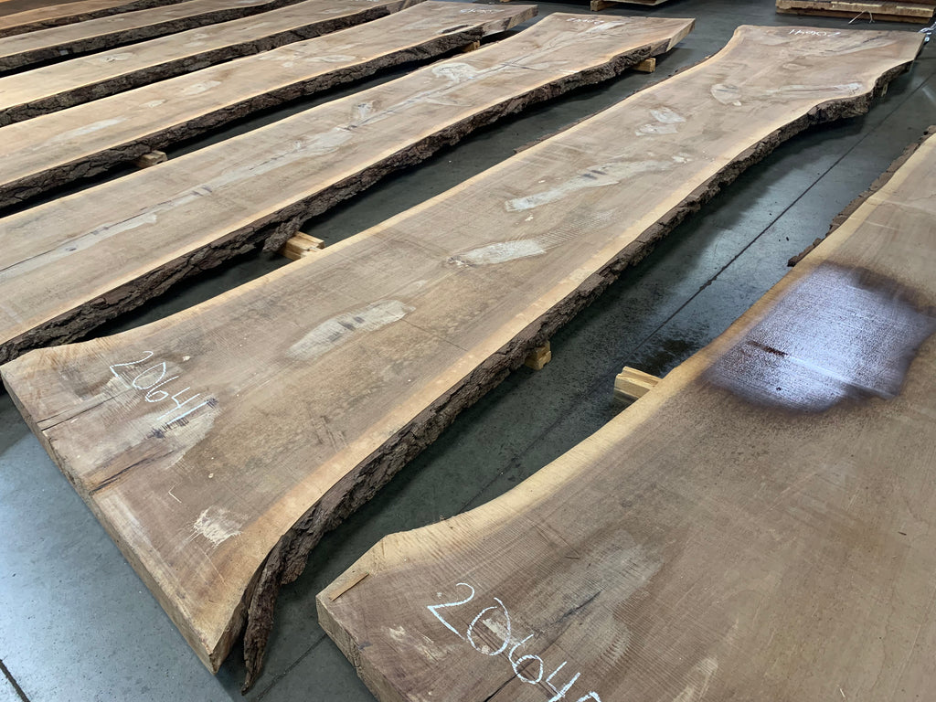 "Black Walnut Slab #20641 (192"" x 31"" - 46"" x 3"")"