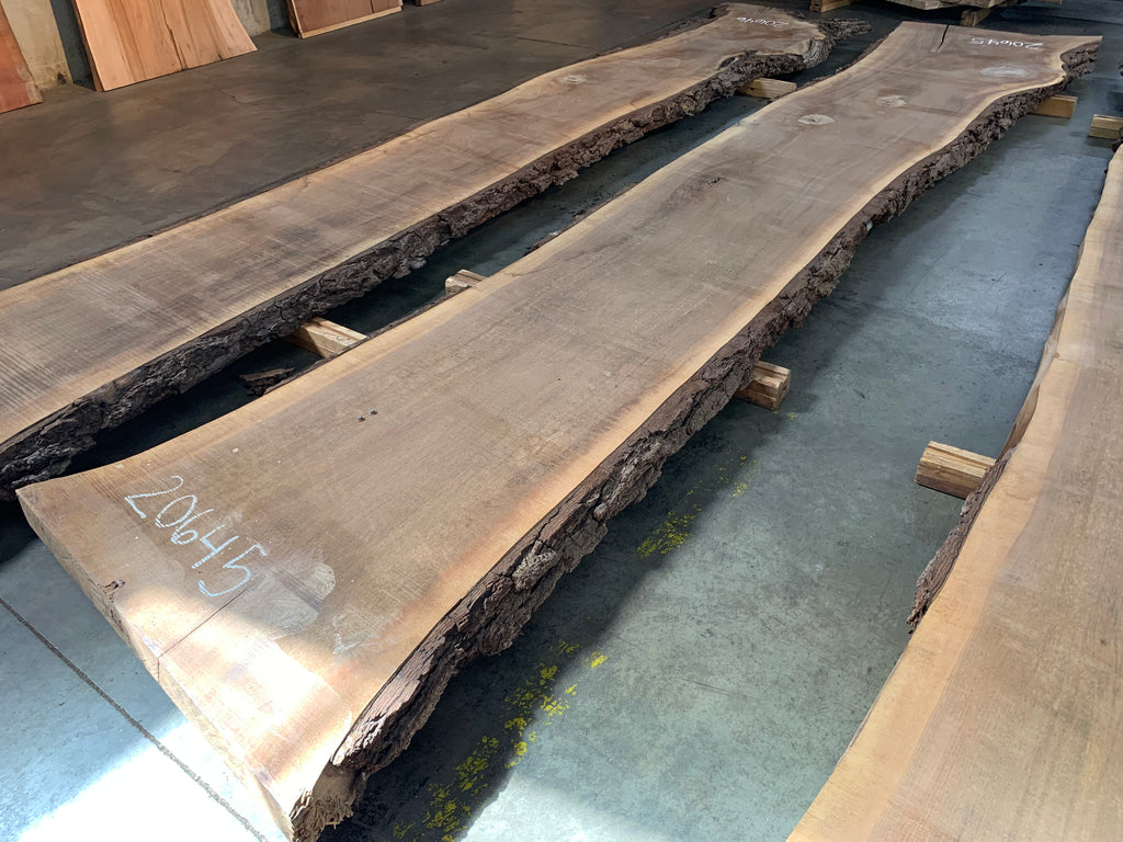 "Black Walnut Slab #20645 (187"" x 28"" - 39"" x 3"")"