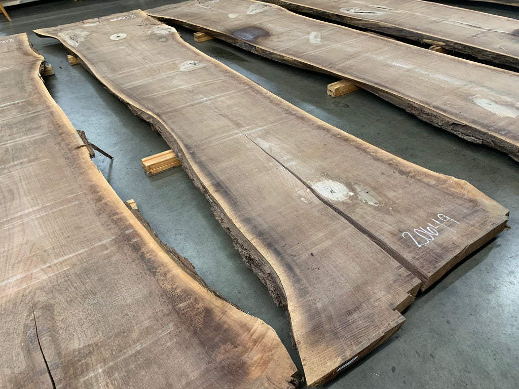"Black Walnut Slab #20649 (179"" x 31.5"" - 46"" x 3"")"