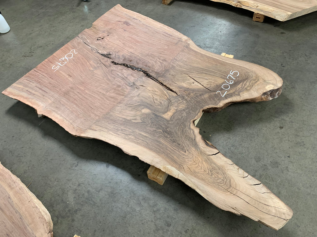 "Claro/English Walnut Graft #20675 (72"" x 37""- 50"" x 2"")"