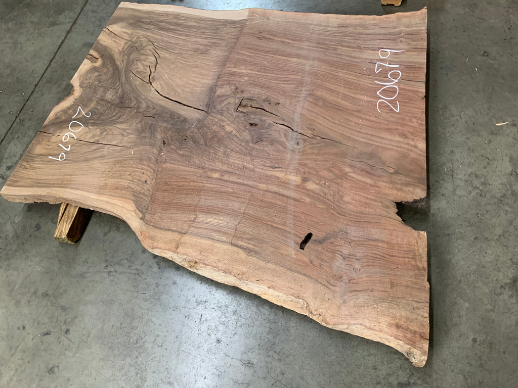 "Claro/English Walnut Graft #20679 (53"" x 40""- 50"" x 2"")"