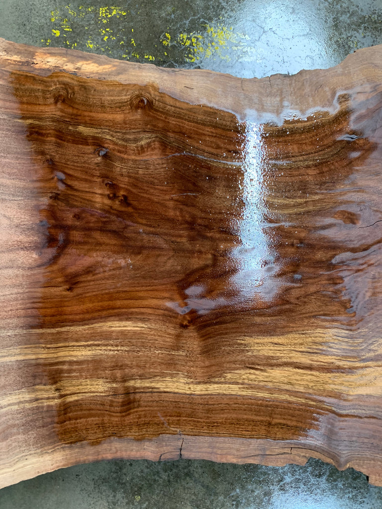 "Claro/English Walnut Graft #20685 (56"" x 24""- 40"" x 2"")"