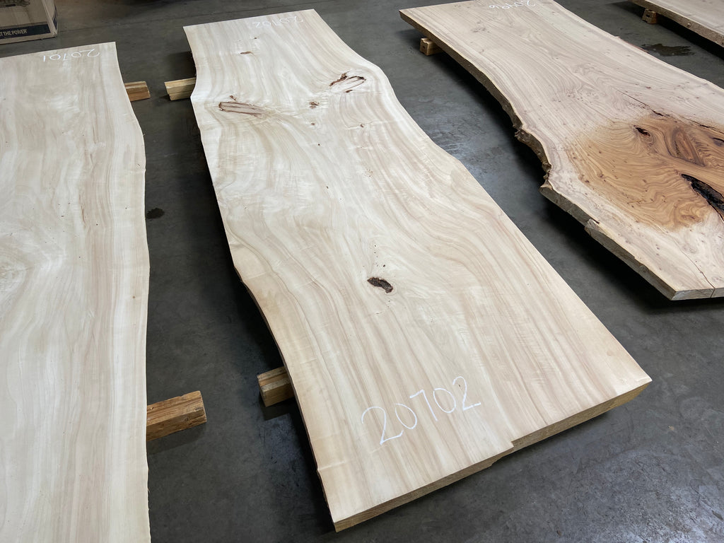 "Colorado Cottonwood #20702 (123"" x 33""- 40"" x 3"")"