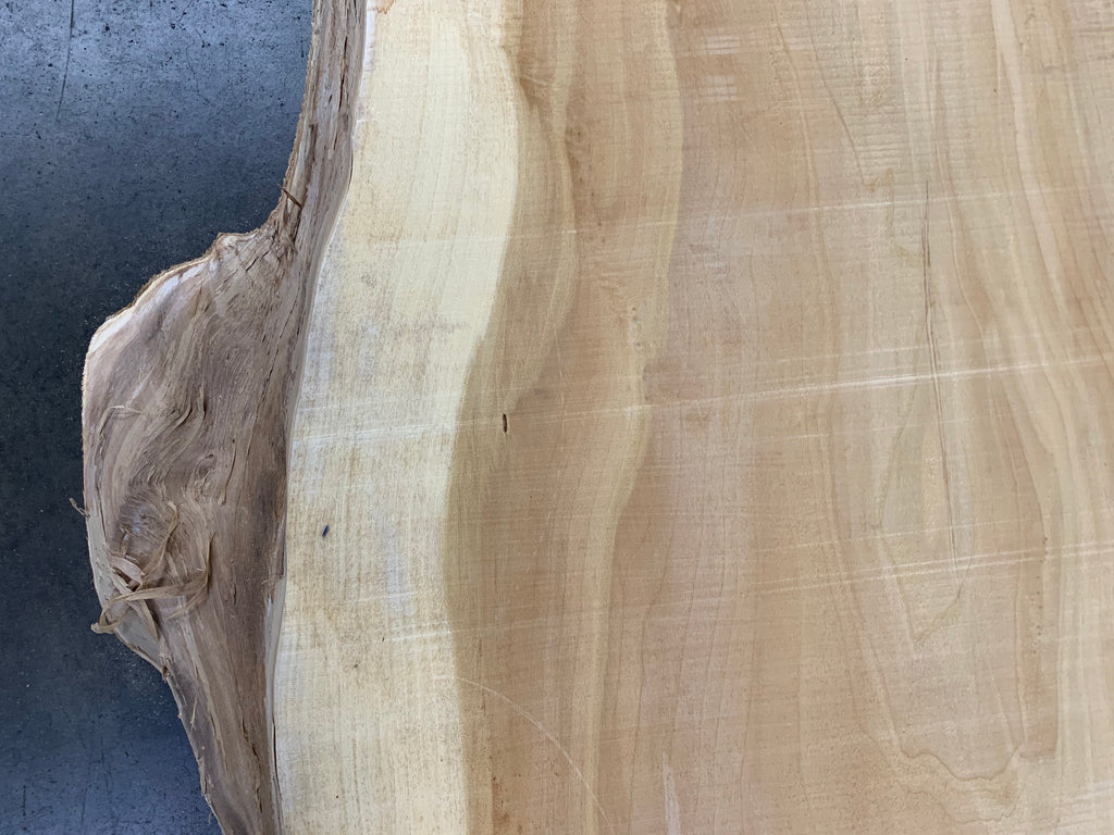 "Colorado Cottonwood #20829 (123"" x 29.5"" - 44"" x 3.25"")"