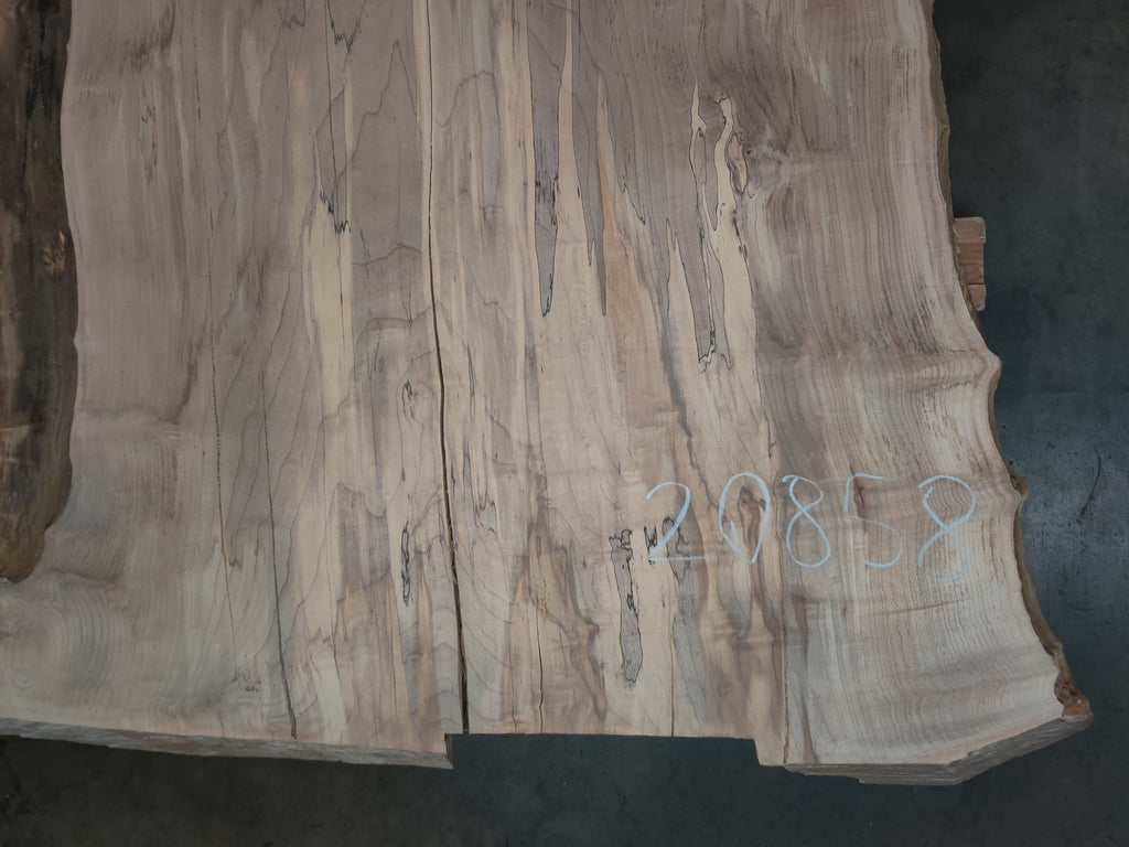 "Hard Maple #20858 (170.5"" x 30"" - 42"" x 2 5/8"")"