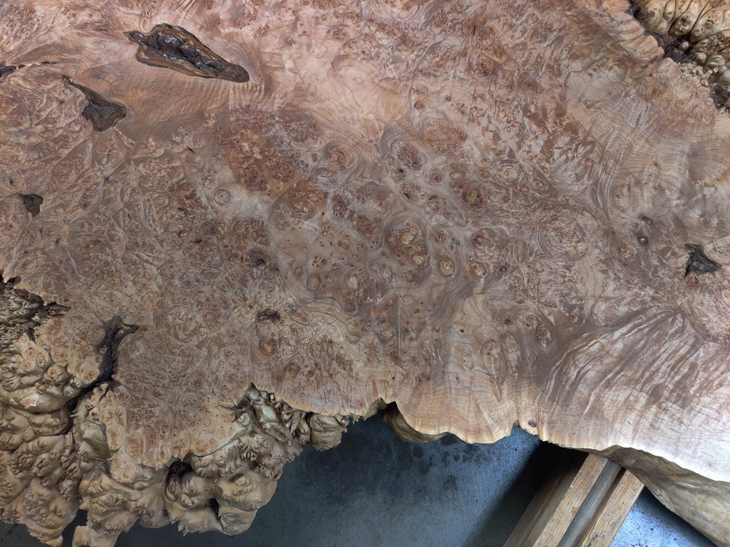 "Maple Burl #3094 (61"" x 18"" - 44"" x 2.5"")"