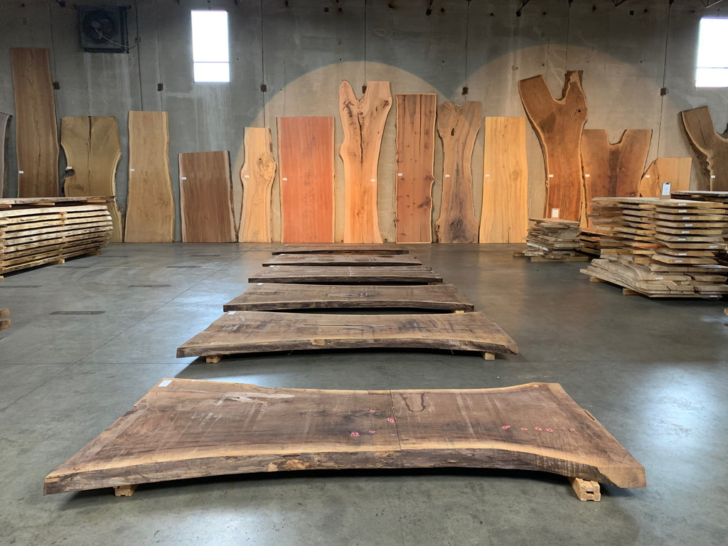 "Black Walnut Slab #20555 (98"" x 37"" - 52"" x 3"")"