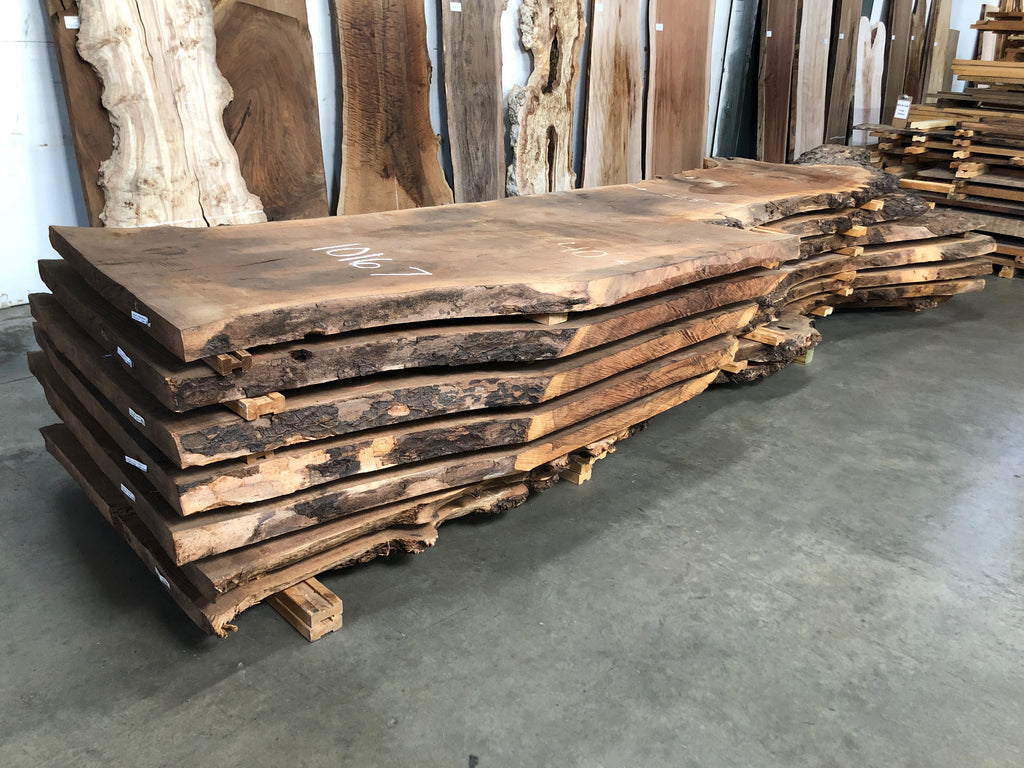 "Claro Walnut Slab #10171 (175"" x 34"" - 43"" x 2.5"")"