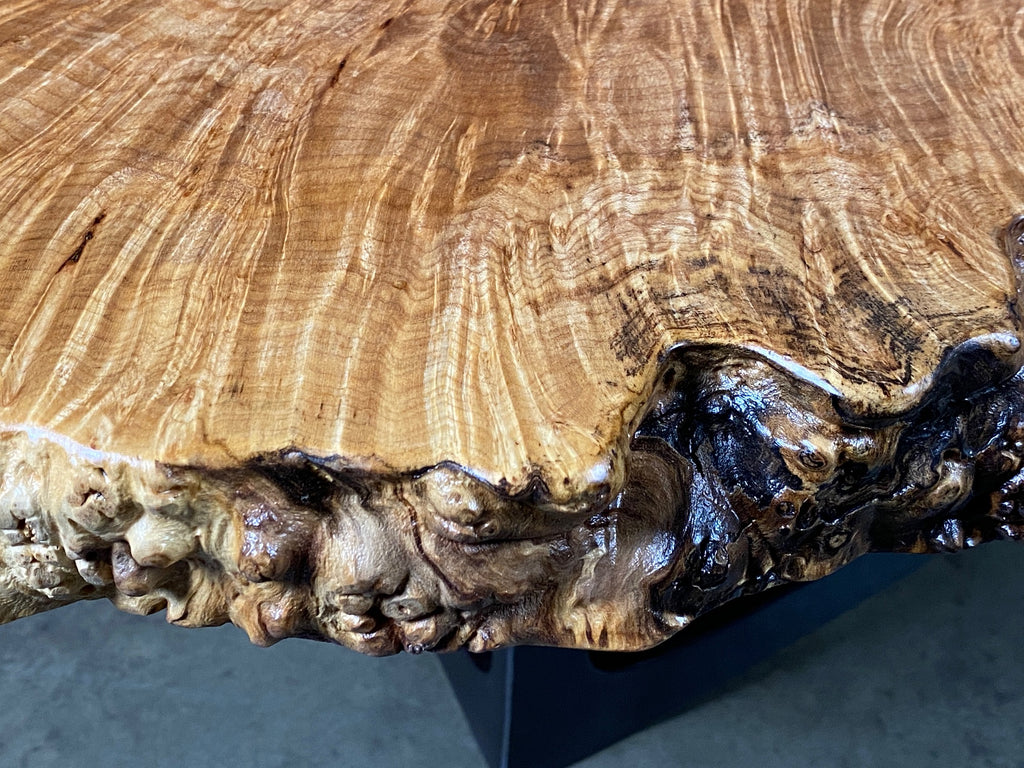 Maple Burl Breakfast/Coffee Table