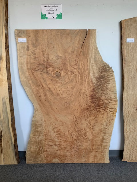 "Hawaiian Queensland Maple (71"" x 41 - 49"" x 2"")"