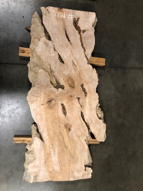 "Burled Maple Slab #MR1 (79"" x 26.5""- 34"" x 2.5"")"