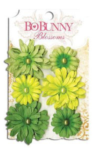 Scrapbooking  Blossoms Clover Daisy Paper Collections 12x12