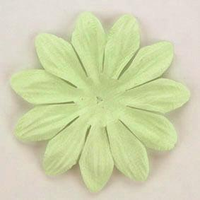 Scrapbooking  Tara Mint 6cm Flowers Paper Collections 12x12
