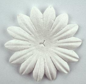 Scrapbooking  Tara White 5cm Flowers Paper Collections 12x12