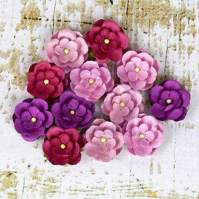 Scrapbooking  Avante Berry Mulberry Flowers 12 pc Prima Marketing