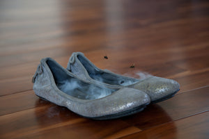 Flat Liners: activated carbon shoe odor killers - Apollo Innovations
