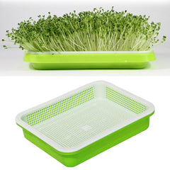 Double-layer  Hydroponics Seed Germination Tray