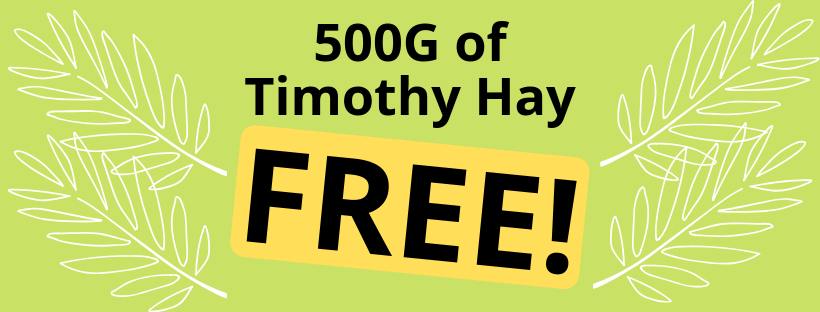FREE TIMOTHY HAY FOR SMALL PETS