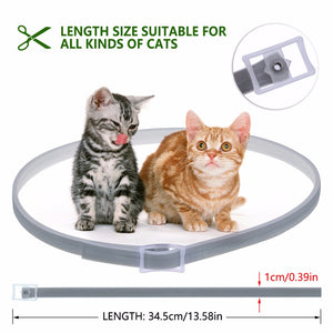 Dewel Flea & Tick Collar for Cats Kittens - 8 Months