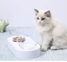 Load image into Gallery viewer, PETKIT Modern Cat Bowl - Dog Bowl