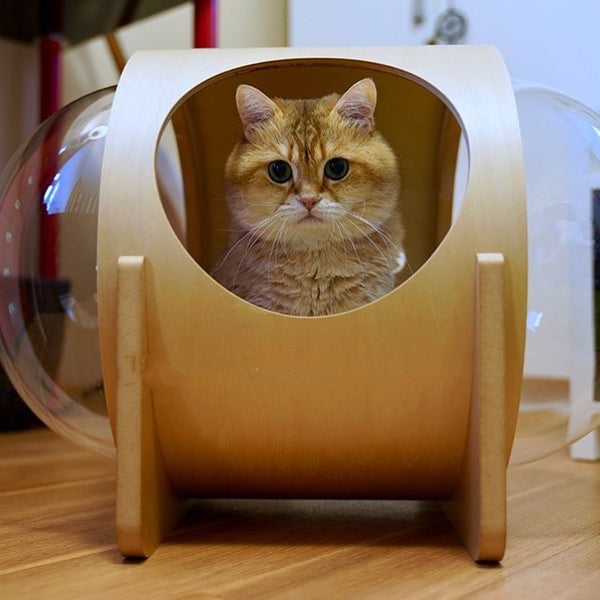 UFO Planet Transparent Clear Deep Sleep Cushion Wooden Tunnel Designer Indoor Cave Pet Bed House For Small Medium Cats - Pawsmeme.com
