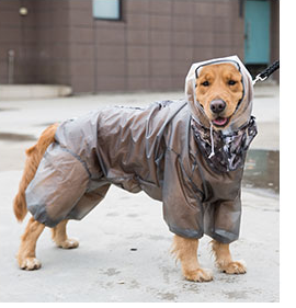 Clear Matte Velcro Outdoor Stylish Waterproof Raincoat with Leg Protection For Large Dogs - Pawsmeme.com