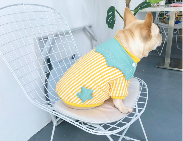 Cute Star Green Fall Winter Warm Cotton Sweater Costume For Small Medium Dogs - Pawsmeme.com