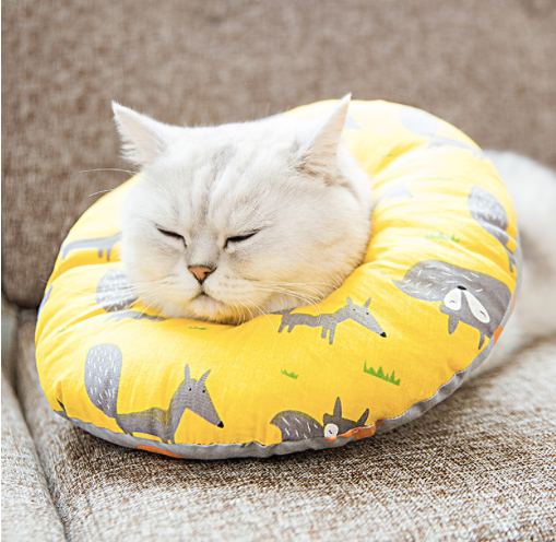 Cartoon Inflatable Soft Pet Recovery Cone After Surgery Protective Elizabethan E-Collar For Small Medium Large Cats - Pawsmeme.com