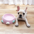 Cute Cloud Whale Tilt Opening Durable Raised Elevated Designer Pet Feeding Bowl For Small Medium Dogs - Pawsmeme.com