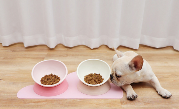 Baby Pink Non-Slip Raised Elevated Designer Pet Feeding Bowl For Small Medium Dogs - Pawsmeme.com