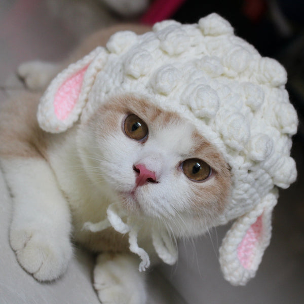 Cute Sheep Ears Handmade Knit Pet Hat Halloween Party Costume Headwear Accessory for Small Medium Cats - Pawsmeme.com