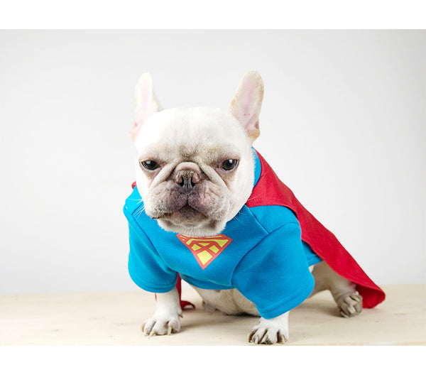 Superman Red Hood Cotton Shirt Costume For Small Medium Dogs - Pawsmeme.com