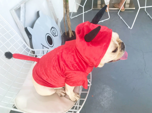 Monster Horn Red Warm Fall Winter Sweater Hoodie Costume For Small Medium Dogs - Pawsmeme.com
