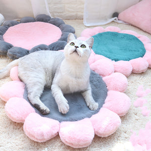 Cute Flower Cushion Summer Indoor Pet Bed For Small Medium Cats - Pawsmeme.com