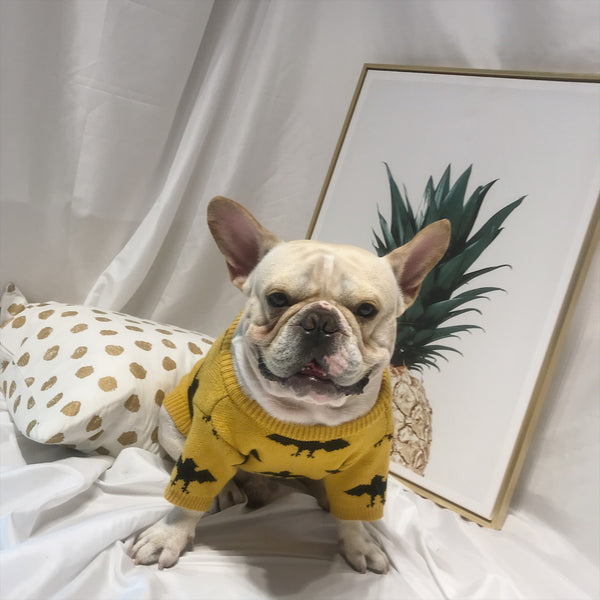 Batman Style Yellow Knit Sweater Costume For Small Medium Dogs - Pawsmeme.com