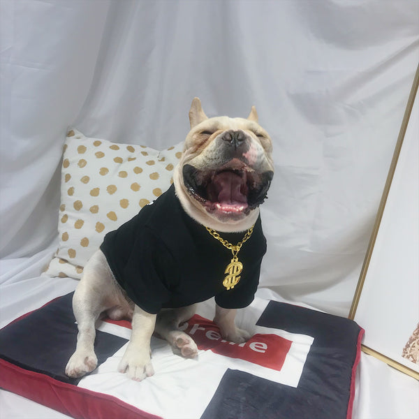 Jordan 23 Style Black Summer T-shirt Costume For Small Medium Dogs - Pawsmeme