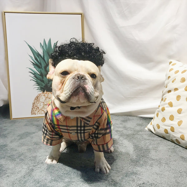 Burberry Style Rainbow Summer Cotton Shirt Costume For Small Medium Dogs - Pawsmeme.com