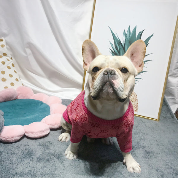 Gucci Style Pink Gold Knit Sweater Costume For Small Medium Dogs - Pawsmeme