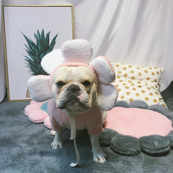 Flower Head Woolen Pink Outfit Warm Sweatshirt Costume For Small Medium Dogs - Pawsmeme.com