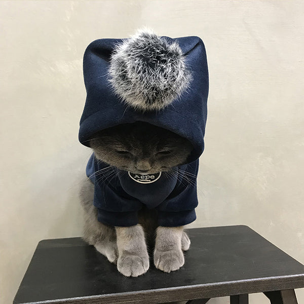 Aape Style Woolen Sweatshirt With Fur Ball Costume For Small Medium Cats - Pawsmeme